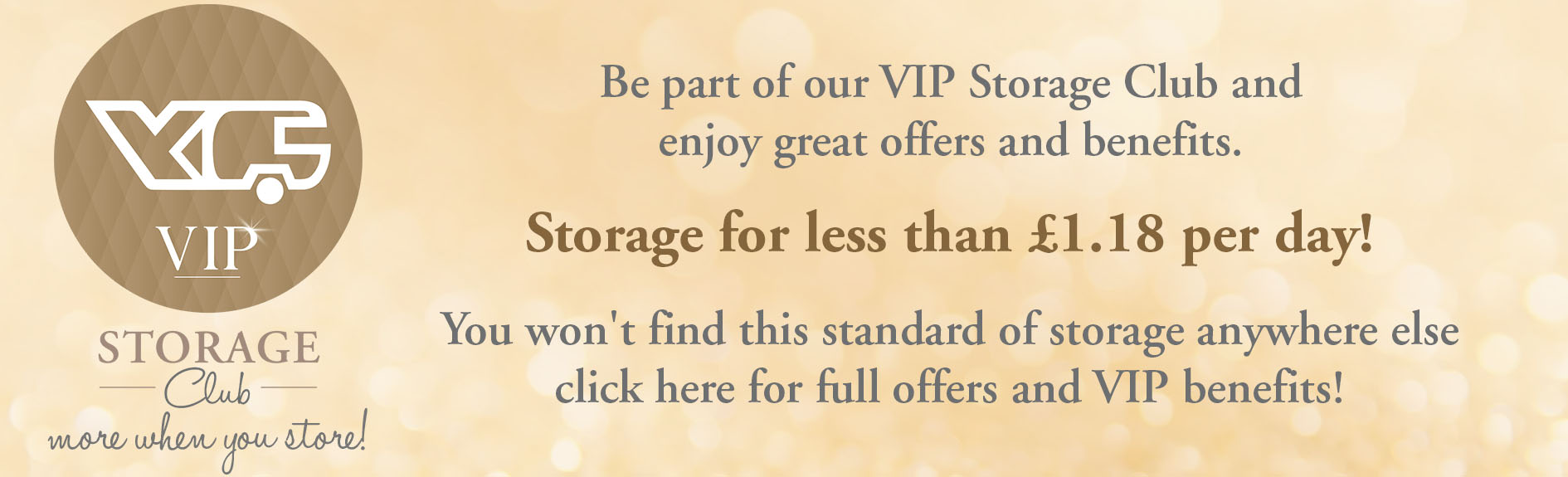 vIP storage club price